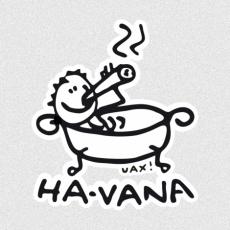 Potisk 1043 - HA-VANA
