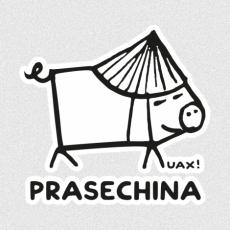Potisk 1226 - PRASECHINA