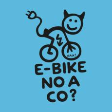 Design 1291 - E-BIKE NO A CO?