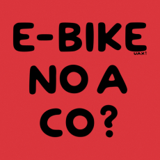 Design 1292 - E-BIKE NO A CO?
