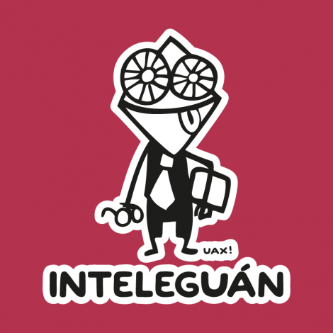 Design 547 - INTELEGUAN